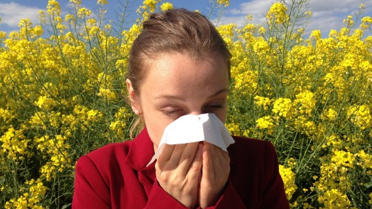 Cold and allergies have similar symptoms. Learn how to tell them apart.