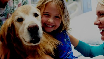 Pediatric girl patient with therapy dog, mom and nurse