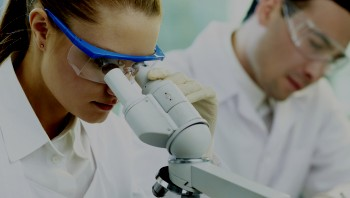 Clinical lab workers looking through microscope